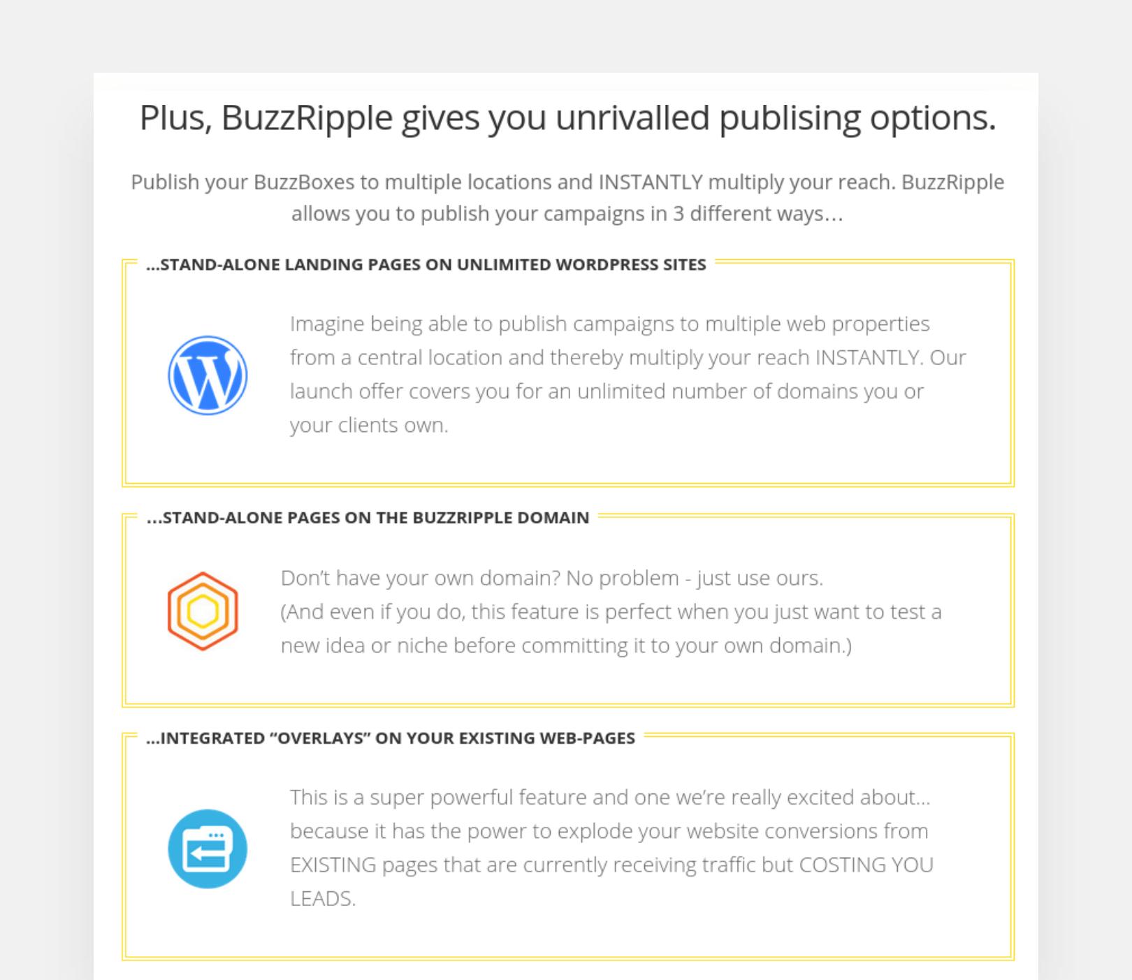 BuzzRipple publishing options screenshot