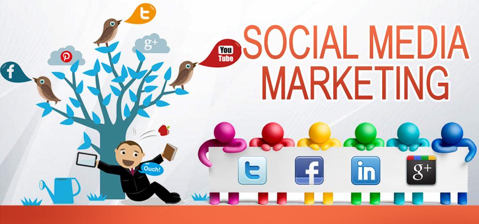 social media marketing agency - digiDZN