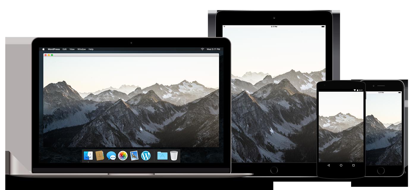 responsive-devices-ipad-2x