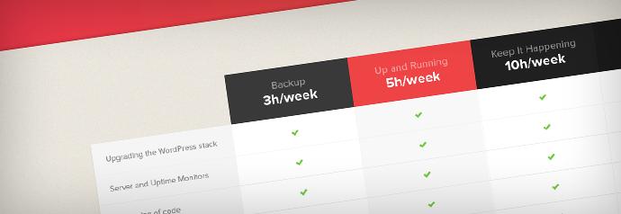 WordPress maintenance packages