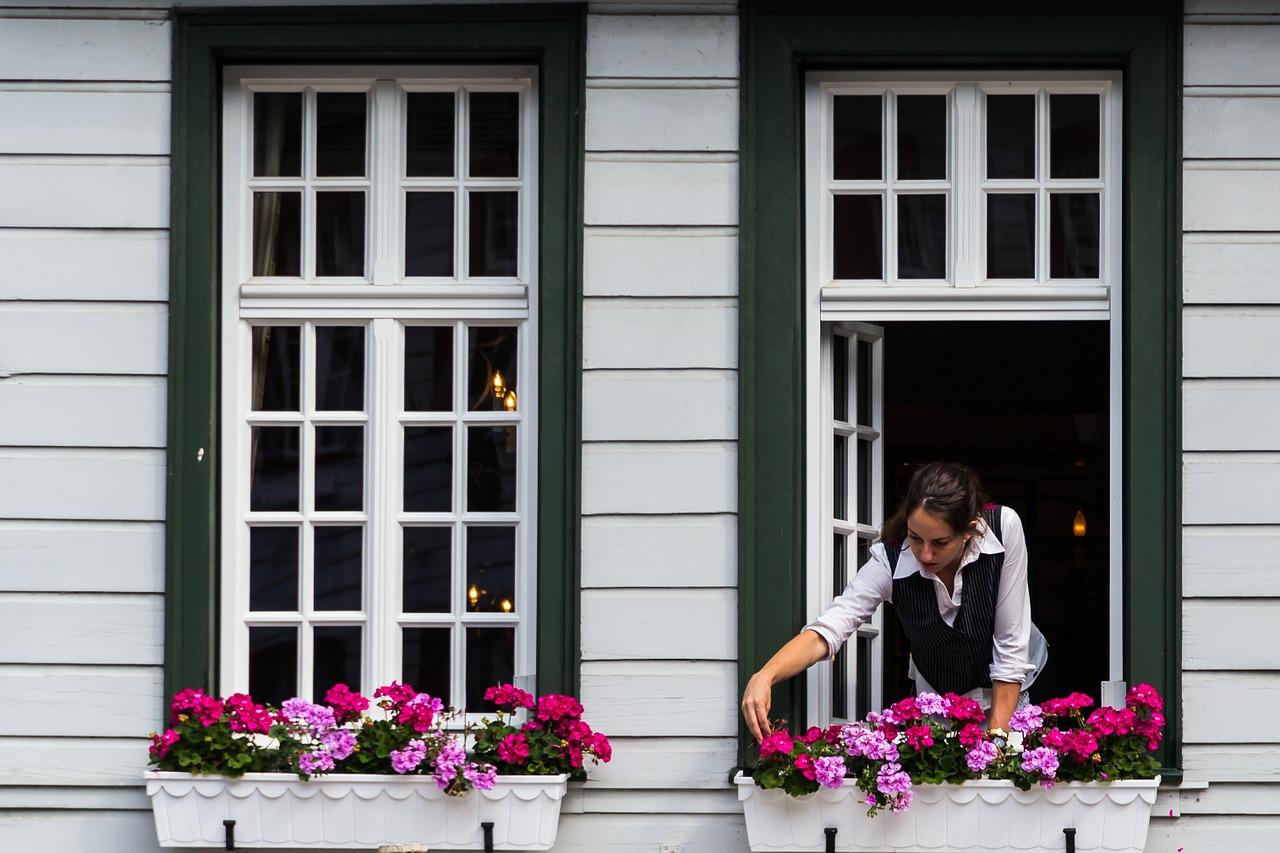 windows-414225_1280