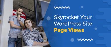 WordPress Page Views