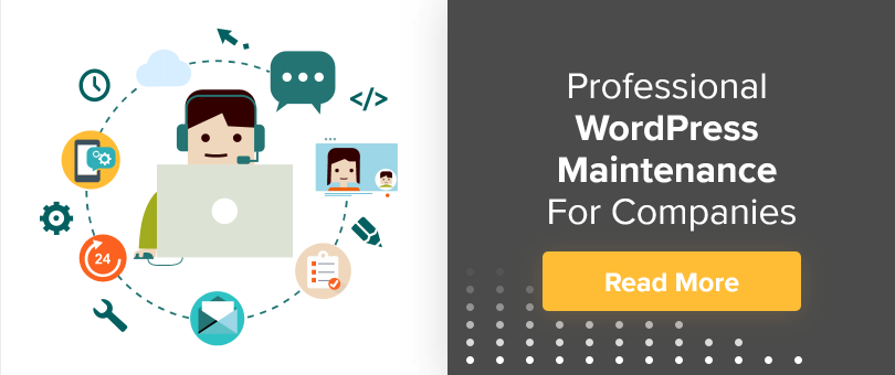 professional WordPress Maintenance