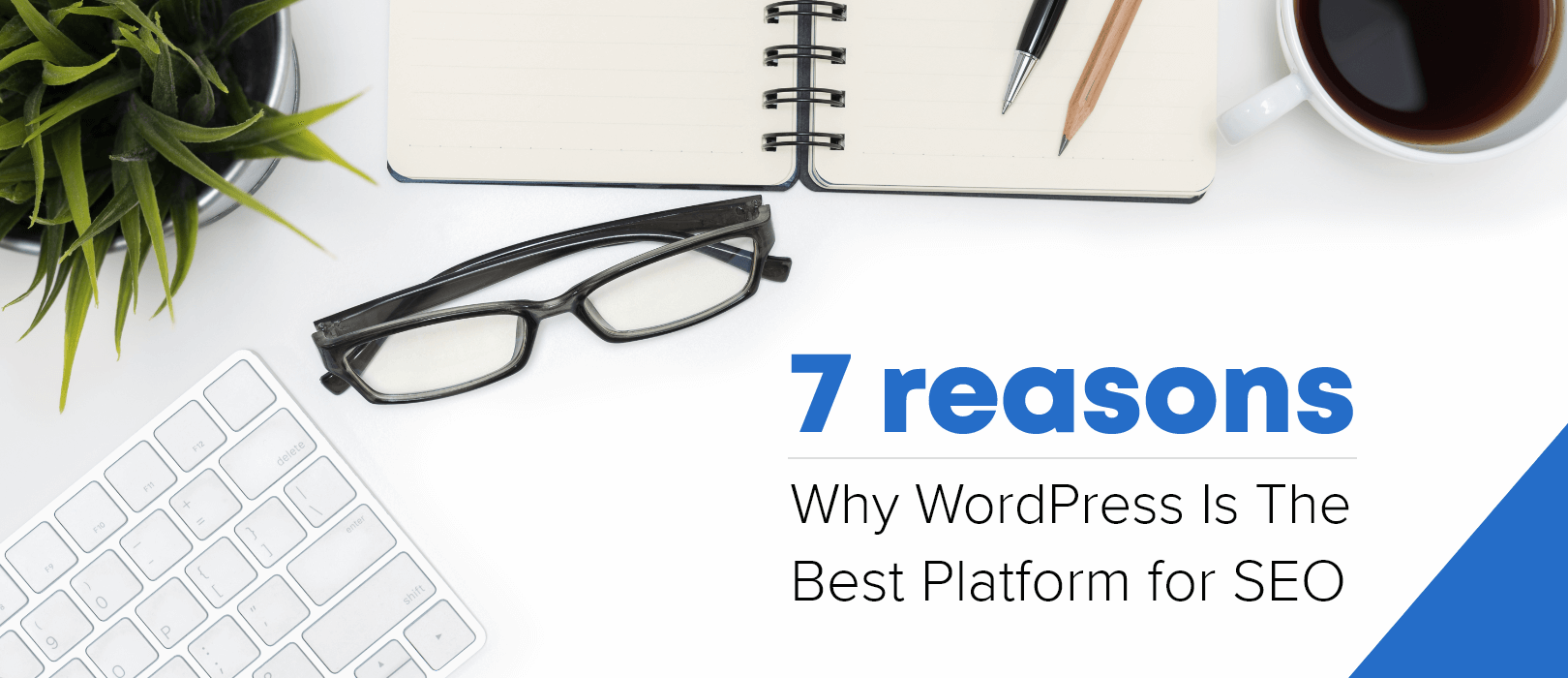 7 Reasons Why WordPress Is the Best Platform for SEO