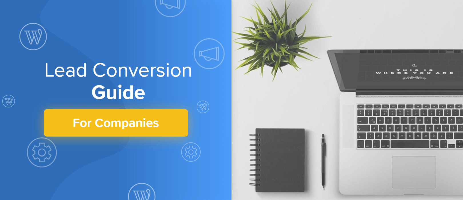 Lead conversion guide for companies