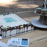wp15 devrix cakes