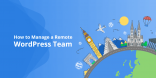 Manage Remote WordPress Team
