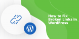 Fix Broken Links WordPress