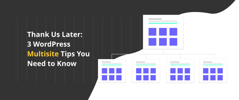 Thank Us Later 3 WordPress Multisite Tips You Need to Know