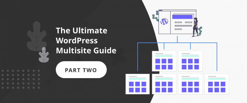 The Ultimate WordPress Multisite Guide - part two