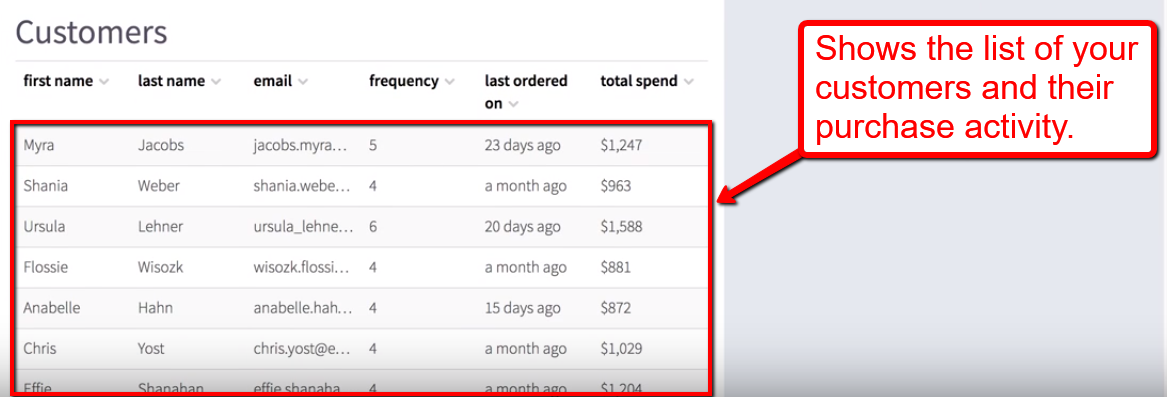 LoyaltyLion list of customers and their purchase activity
