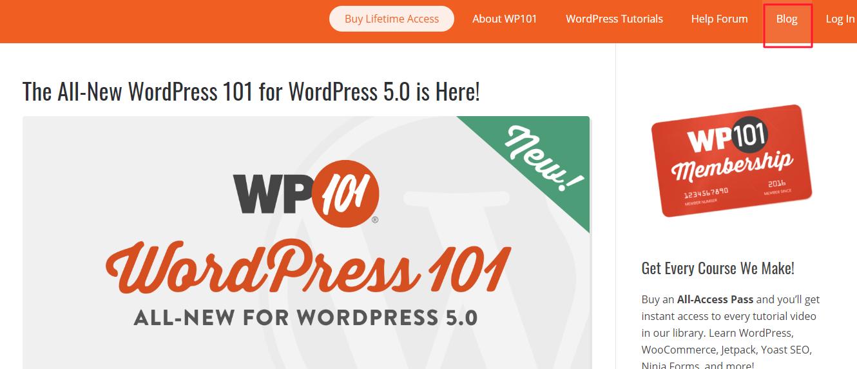 wp 101 blog