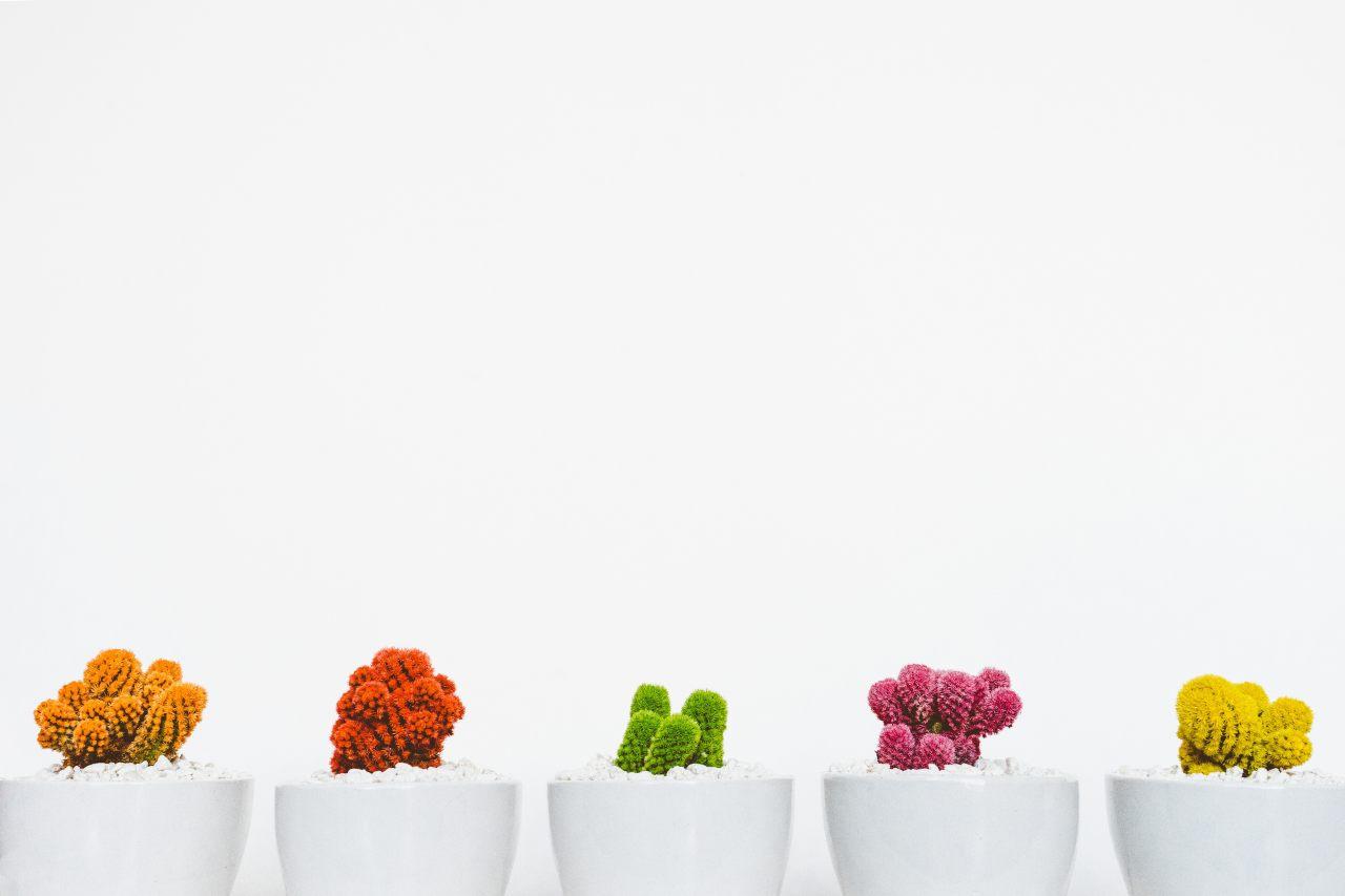 Lead Nurturing Can Help