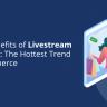 Livestream Shopping
