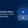 What Is a Growth Share Matrix and How to Use It in Digital Marketing
